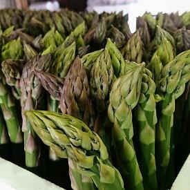 【ふるさと納税】柳瀬産商 グリーンアスパラ 5kg