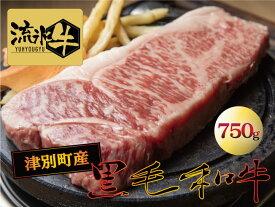 【ふるさと納税】流氷牛 ステーキ(サーロイン)750g