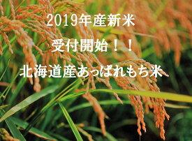【ふるさと納税】新米 今井農場 あっぱれもち米20kg(精米)