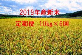 【ふるさと納税】●定期便● 今井農場 あっぱれ米10kg×6回