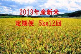 【ふるさと納税】●定期便● 今井農場 あっぱれ米5kg×12回