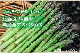 【ふるさと納税】細川農園 無農薬アスパラガス1.2kg