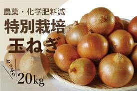 【ふるさと納税】北海道津別町産 特別栽培玉ねぎ20kg