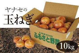 【ふるさと納税】北海道津別町産 玉ねぎ 10kg