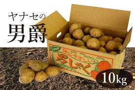 【ふるさと納税】ヤナセ農園 男爵(じゃがいも)10kg