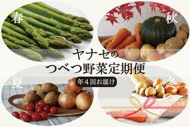 【ふるさと納税】ヤナセ農園 つべつ野菜定期便 (年4回お届け)