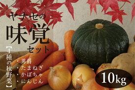 【ふるさと納税】ヤナセ農園 味覚セット10kg