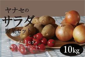 【ふるさと納税】サラダ野菜セット 10kg