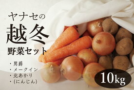 【ふるさと納税】ヤナセ農園 越冬野菜セット10kg