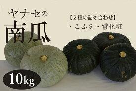 【ふるさと納税】ヤナセ農園 南瓜10kg