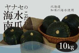 【ふるさと納税】ヤナセ農園 ~知床海水ミネラル栽培~ 南瓜10kg