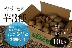 【ふるさと納税】ヤナセ農園 津別町産じゃがいも3種類(男爵・北あかり・メークイン)10kg