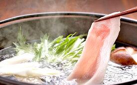 【ふるさと納税】オホーツク サロマ豚ロース肉 しゃぶしゃぶ用600g 【お肉・豚肉・ロース】