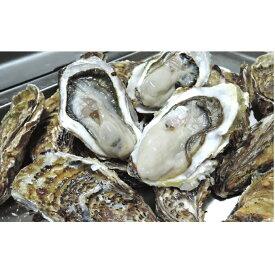 【ふるさと納税】サロマ湖産 殻付き牡蠣貝(2年物)5kg 【魚貝類・生牡蠣・かき】 お届け:2020年11月〜2021年2月