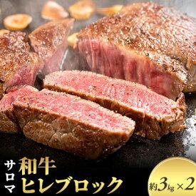 【ふるさと納税】サロマ和牛ヒレブロック1頭分6kg前後(約3kg×2)【オホーツク佐呂間】 【お肉・牛肉・ヒレ】