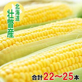 【ふるさと納税】<2022年8月初旬よりお届け>約10kg!北海道壮瞥産とうもろこし(恵味)【L〜2Lサイズ 22〜25本】 【野菜・とうもろこし】 お届け:2022年8月初旬〜8月末まで