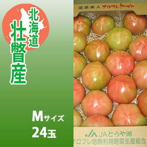 【ふるさと納税】<2020年3月上旬より順次出荷>北海道壮瞥産 オロフレトマト24玉入り(Mサイズ) 【野菜・野菜セット・トマト】 お届け:2020年3月上旬〜6月15日まで