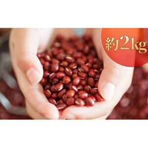 【ふるさと納税】北海道壮瞥産 小豆 約2kg(約500g×4袋) 【野菜・あずき】