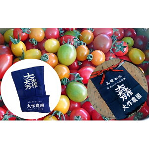 【ふるさと納税】<2020年7月中旬よりお届け>北海道壮瞥産 大作農園のカラフルミニトマト約1kgと前掛けとオリジナル日本手ぬぐい 【野菜・ミニトマト・ファッション小物・タオル・日用