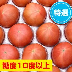 【ふるさと納税】<2021年6月下旬よりお届け>【特選・糖度10度以上】北海道壮瞥産 こだわりフルーツトマト 20玉以上 【野菜・トマト】 お届け:2021年6月下旬〜7月末頃まで