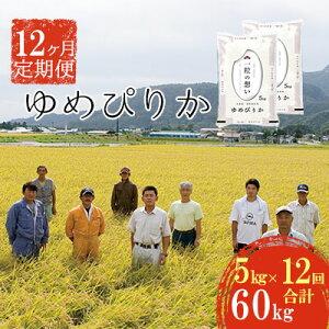 【ふるさと納税】北海道壮瞥産 ゆめぴりか 計60kg(5kg×12ヶ月定期配送) 【定期便・米・お米・ゆめぴりか・60kg・12ヶ月・12回・1年】