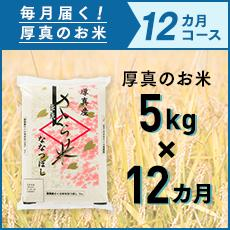 【ふるさと納税】毎月届く定期便「厚真のお米」5kg