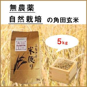 【ふるさと納税】北海道厚真町産 無農薬・自然栽培米 角田玄米 5kg(ほしのゆめ)