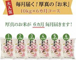 【ふるさと納税】6か月!毎月届く定期便「厚真のお米」10kg