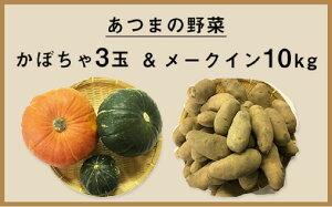 【ふるさと納税】2色かぼちゃとメークイン10kgセット