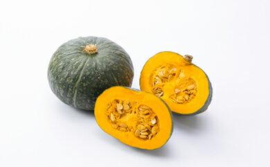 【ふるさと納税】《先行予約》厚真産かぼちゃ食べくらべ 数量限定!