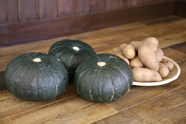 【ふるさと納税】厚真の秋の味覚(かぼちゃ&メークイン)セット