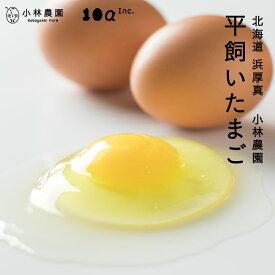 【ふるさと納税】無投薬・平飼い有精卵 25個セット