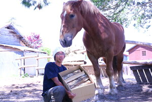 【ふるさと納税】<馬の林業>西埜馬搬の北海道ナラ薪100kg