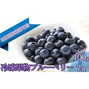 【ふるさと納税】役に立ちます 冷凍カット果物 ブルーベリー100g×7袋 【果物詰合せ・フルーツ】