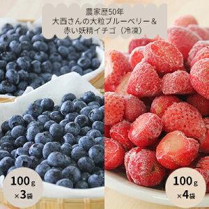 【ふるさと納税】役に立ちます!冷凍カット果物2種( ブルーベリー100g×3袋&いちご100g×4袋) 【果物詰合せ・フルーツ・果物類・いちご・苺・イチゴ】
