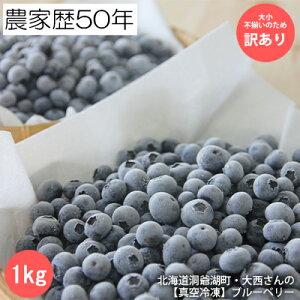 【ふるさと納税】【冷凍】 訳あり ブルーベリー 1kg 【果物詰合せ・フルーツ・訳あり・ブルーベリー・1kg】