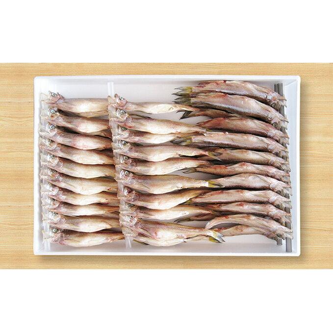 【ふるさと納税】北海道産ししゃも S50尾セット 【魚貝類/ししゃも】
