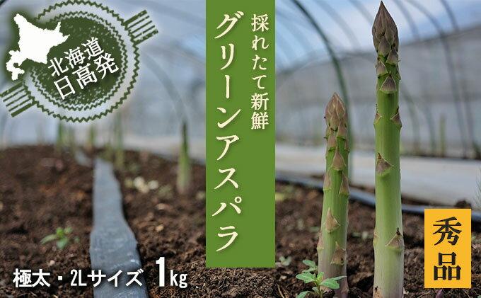 【ふるさと納税】2L【秀品】約1kgグリーンアスパラ<北海道日高門別産> 【野菜】 お届け:2019年4月上旬〜6月上旬まで