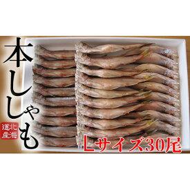 【ふるさと納税】北海道産ししゃもL30尾セット 【魚貝類・ししゃも・魚介類・干物・11月のおすすめ】
