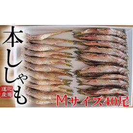 【ふるさと納税】北海道産ししゃもM40尾セット 【魚貝類・ししゃも・魚介類・干物】