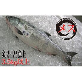 【ふるさと納税】日高産銀聖鮭【生】3.5kg以上(メス) 【魚貝類・鮭・サーモン】 お届け:2019年9月中旬〜10月末まで