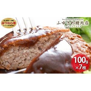 【ふるさと納税】しっとり美味しい「みついし牛とホエー豚のハンバーグ」 【お肉・ハンバーグ・ホエー豚のハンバーグ・ホエー豚】 お届け:2021年1月下旬以降順次出荷