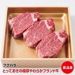 【ふるさと納税】十勝鹿追産牛肉ヒレステーキ