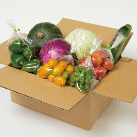 【ふるさと納税】大晶ファームの有機野菜セット(10月31日までの受付)【Z-1003】