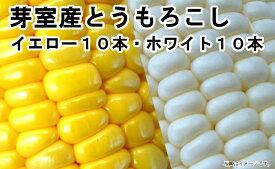 【ふるさと納税】愛菜屋のめむろ産とうもろこし(イエロー10本・ホワイト10本)