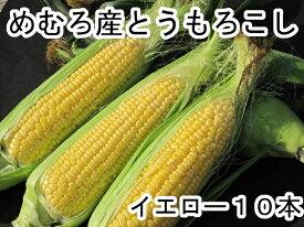 【ふるさと納税】愛菜屋のめむろ産とうもろこし(イエロー10本)