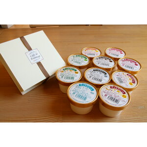 ≪ふるさと納税≫北海道産の生乳使用!濃厚アイスクリーム(80ml×10個)とカマンベールチーズケーキのセット[C1-1]