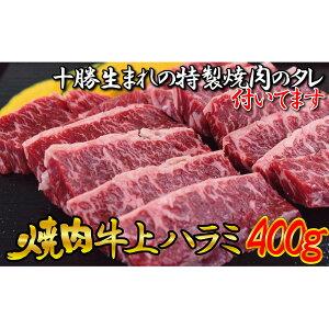 【ふるさと納税】牛上ハラミ(サガリ)400g タレ付き焼肉セット 【お肉・牛肉・焼肉・焼肉・たれ・調味料】 お届け:2〜3ヶ月お時間がかかる場合があります。