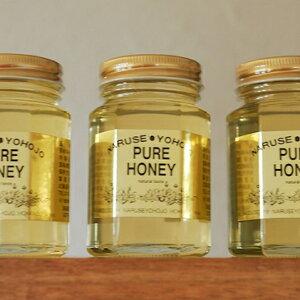 【ふるさと納税】ナルセ養蜂場 北海道産アカシア蜂蜜200g×3本セット 【蜂蜜・はちみつ・加工食品・ハチミツ・あかしあ・セット】