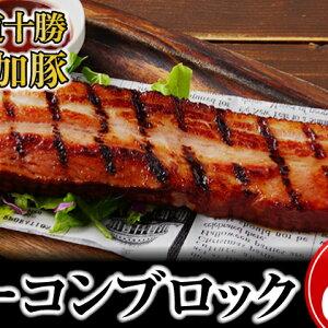 【ふるさと納税】北海道十勝の無添加豚ベーコンブロック600g 【肉の加工品・お肉・豚肉・燻製・無添加】